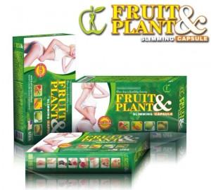 Obat Pelangsing Badan Fruit Plant malang